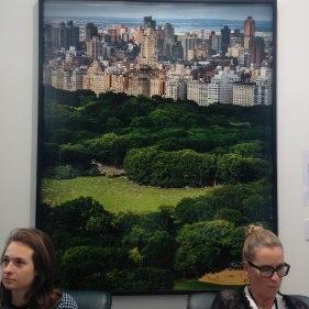 Les gardiennes de Central Park ©SophieLeRenard - All rights reserved